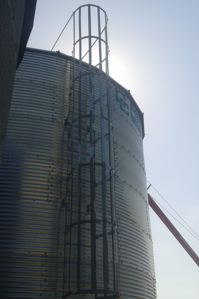 Agribin Grain Silo ladder access